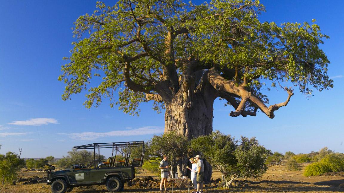 Botswana individualreise