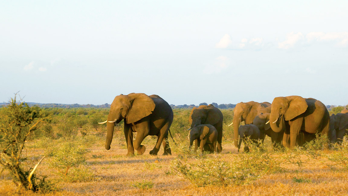 afrika rundreise