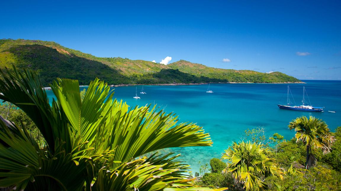 Insel Praslin Anse Lazio jungle