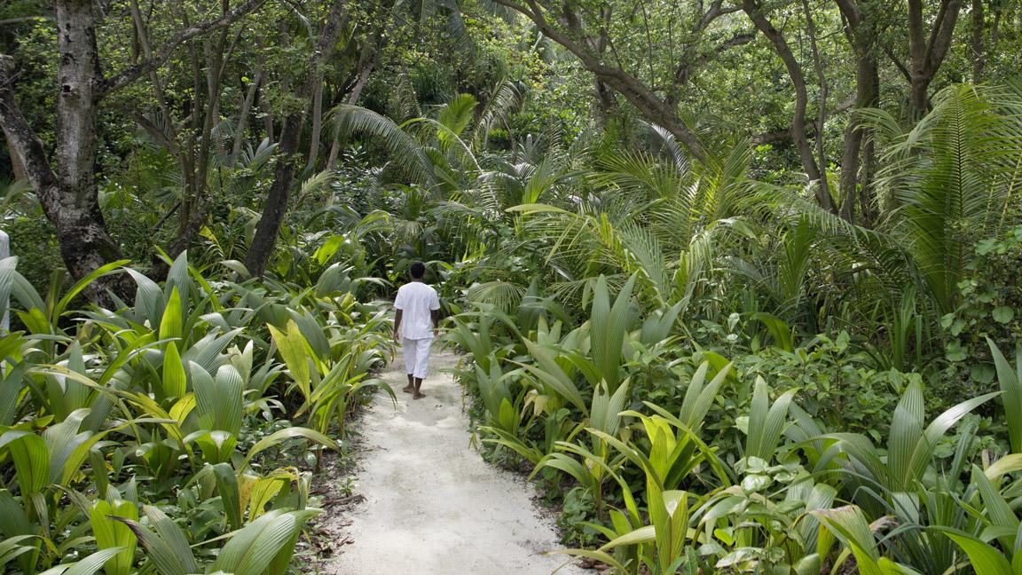 Soneva Fushi - Das natürliche Paradies