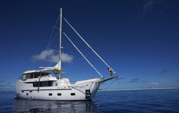 tauchen auf den Malediven auf der Soneva