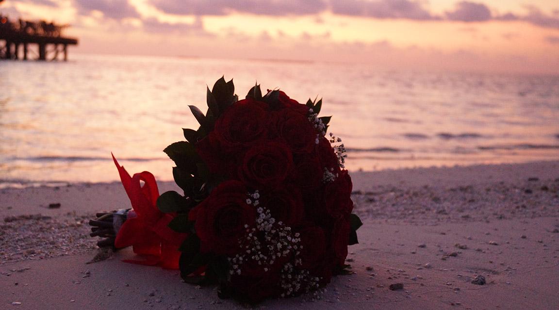 Mirihi Island Resort - Flitterwochen