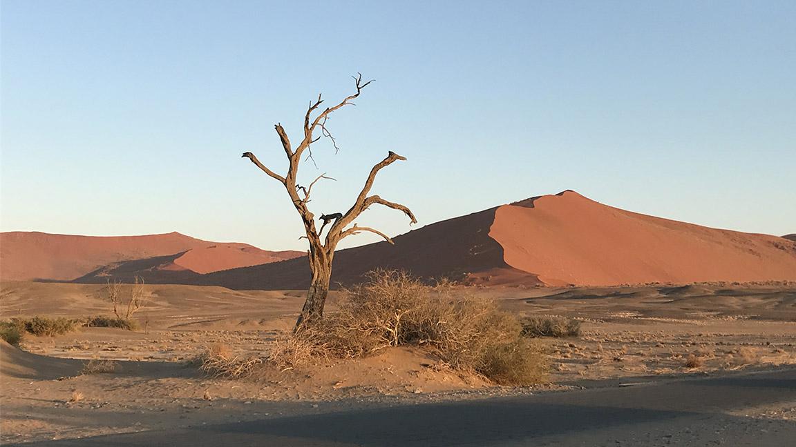 Namibia Rundreise mit Katharinas Reisen a la Carte