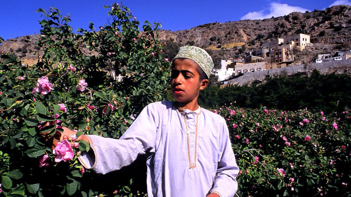 Junge pflückt Blumen im Sultanat