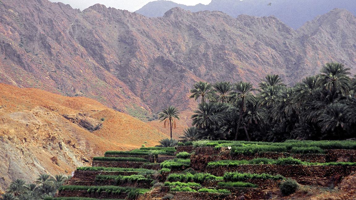Bild von Reise in den Oman