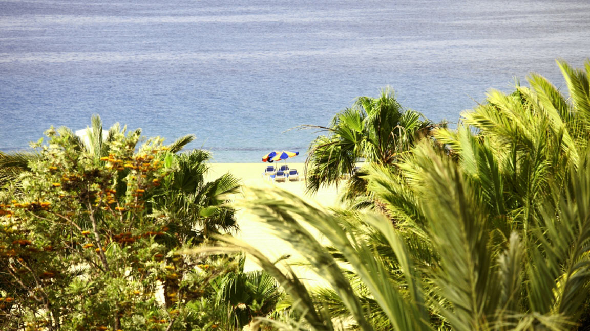 Robinson Club Jandia Playa strand mit palmen und meer