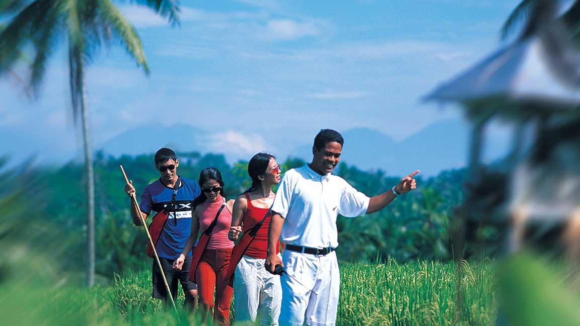Führung durch die Reisfelder beim Maya Ubud Resort & Spa auf Bali