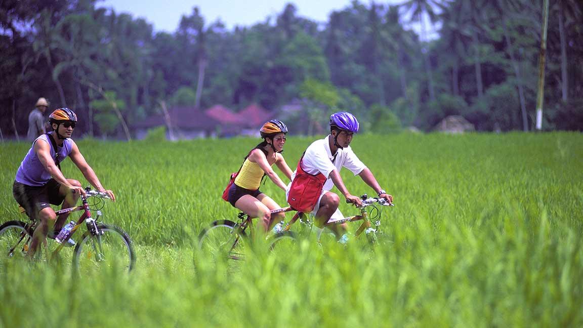Maya Ubud Resort & Spa Fahrradtour