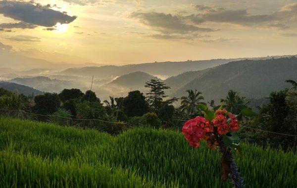 Sonnenuntergang in Munduk Bali