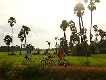 Kambodscha Fahrradtour durch Reisfelder