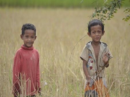 Kambodscha Kinder auf dem Feld