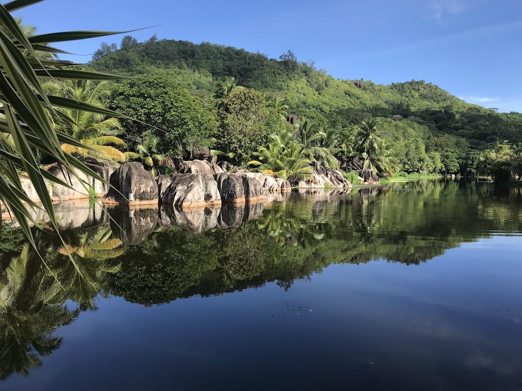 Blick in Bucht mit tropischen Wäldern