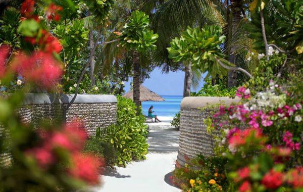 Garten und Strand
