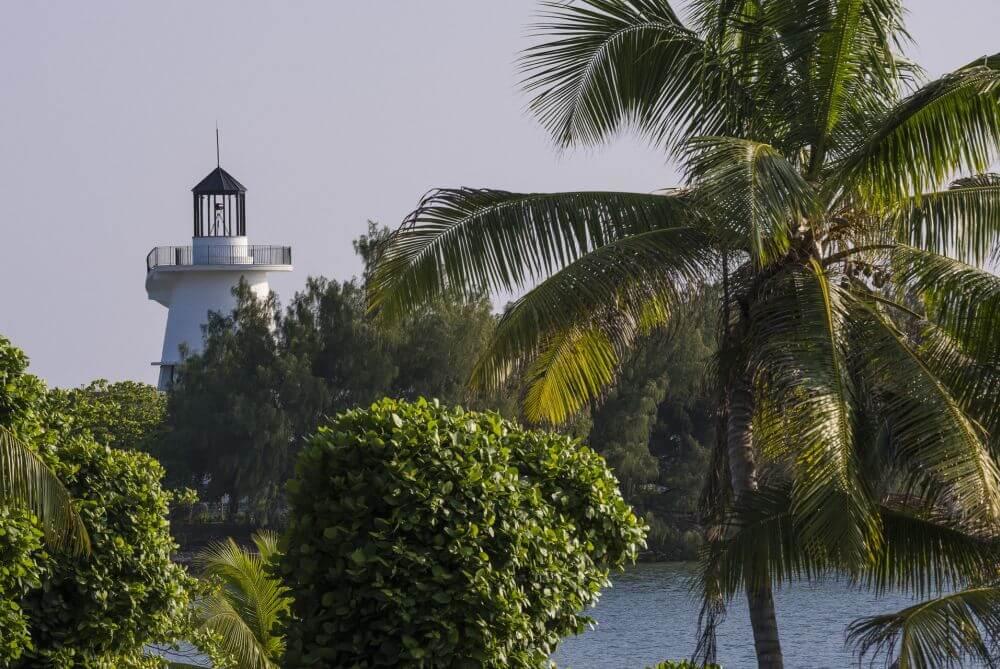 Leutturm und Palmen