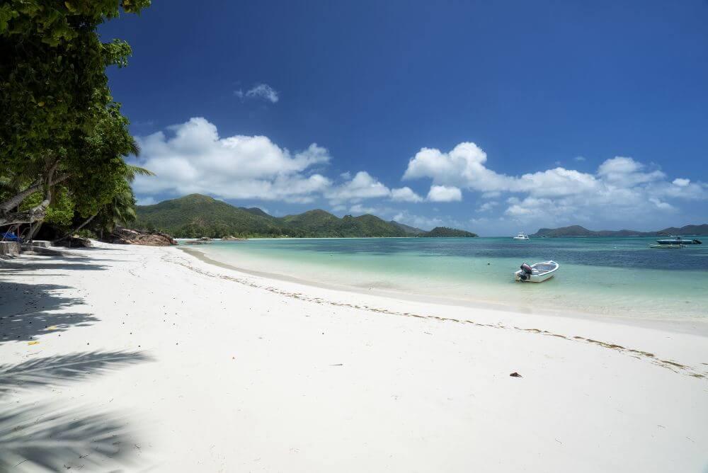 Sandstrand mit Palmen und Boot