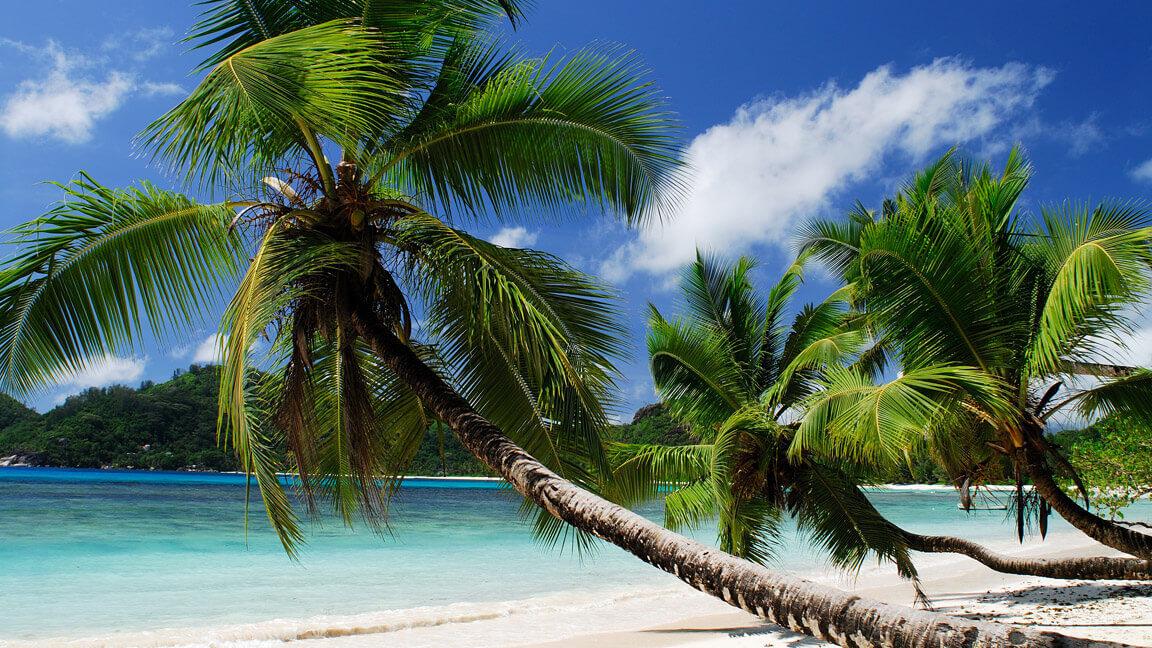 Seychellen Baie Lazare Beach