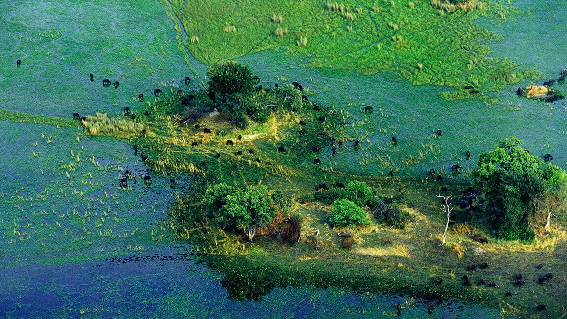 Okavango-Delta Botswana Reise