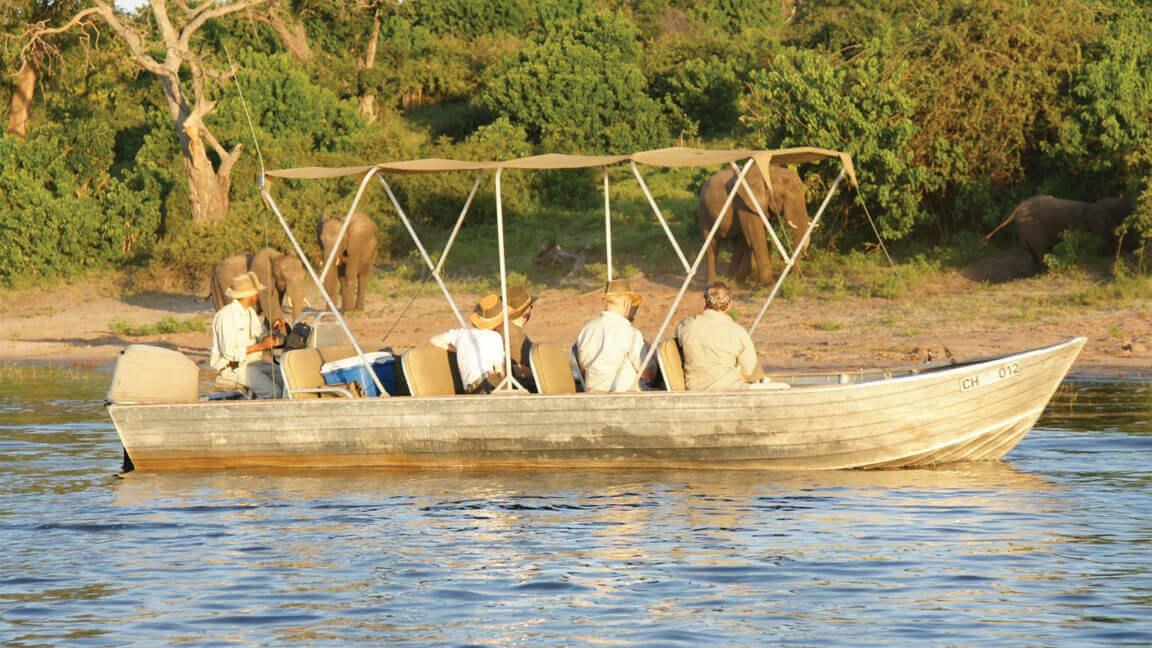 Elefanten am Flussufer auf Botswana Reise