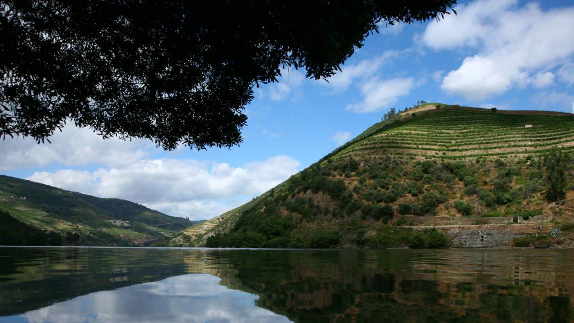 Douro-Fluss Portugal