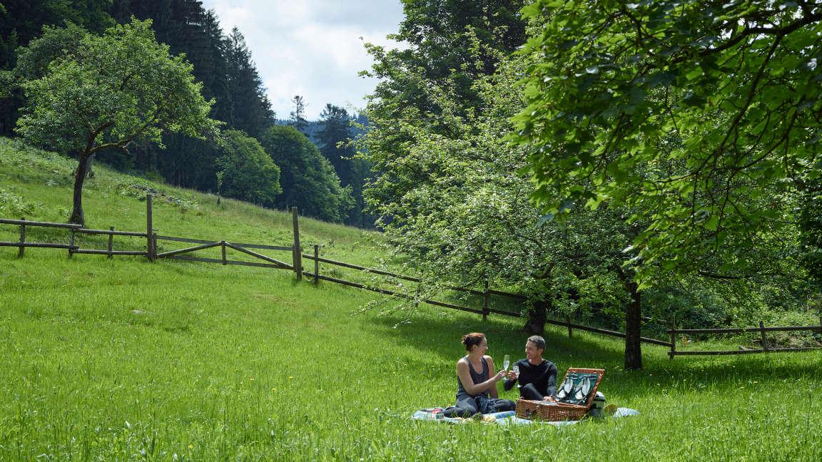 Brenners Park Schwarzwald Picknick im Grünen