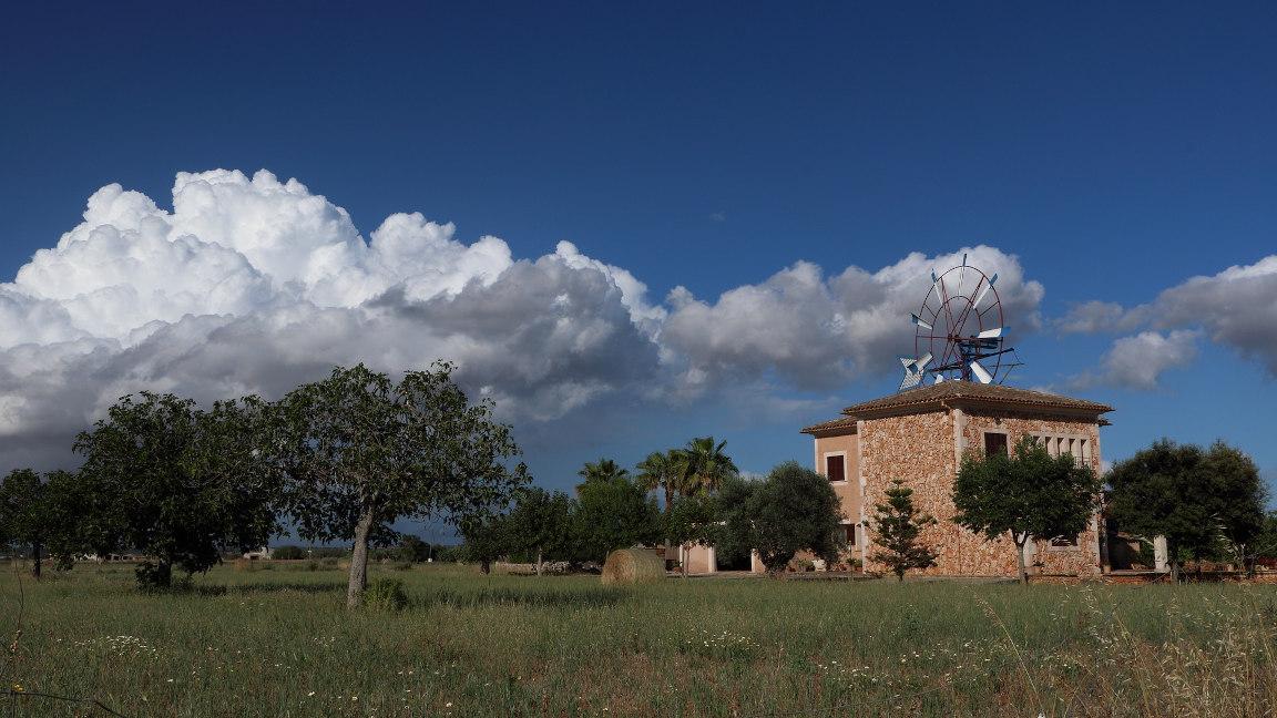 Inselinnere und Windmühle auf Mallorca